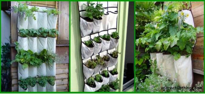 Simple-planter-ideas-for-small-gardens-shoes-organizers
